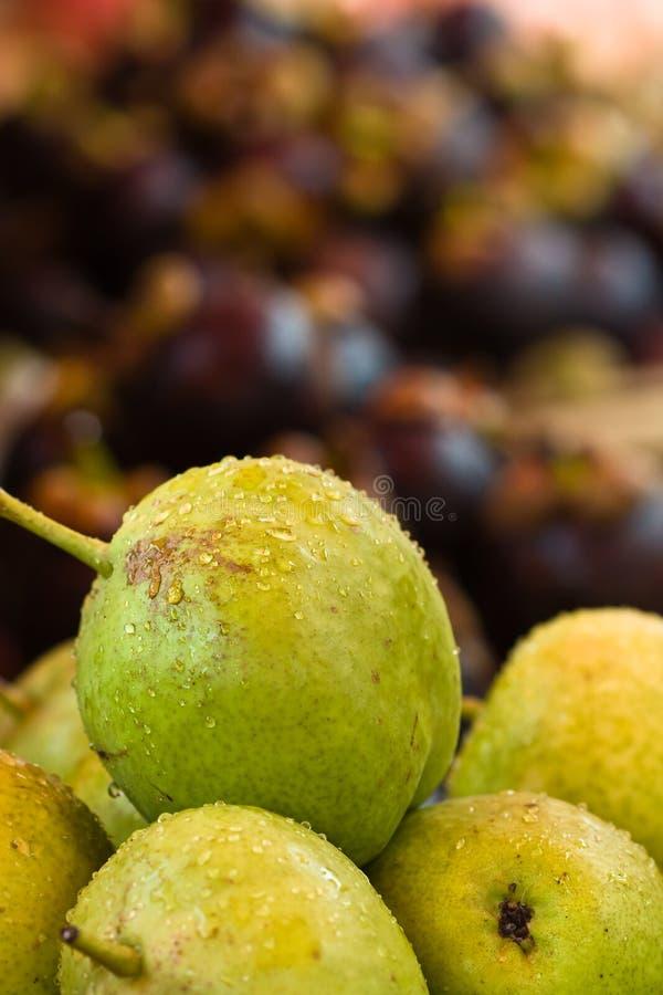 Snow pears (Pyrus nivalis) royalty free stock photos