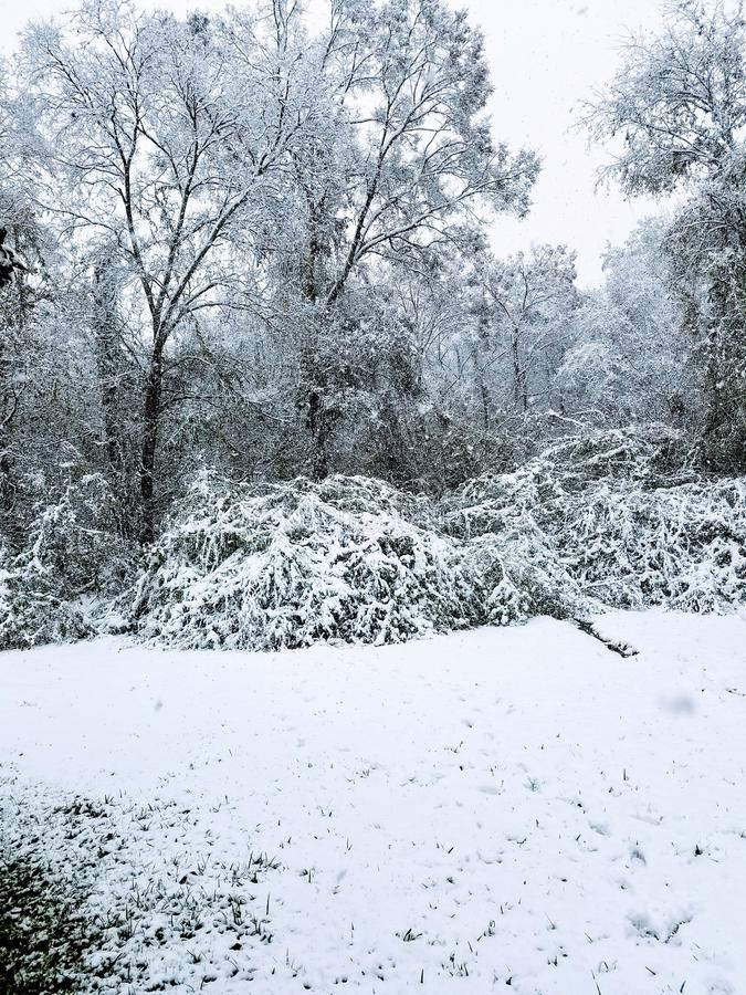 Snow Pictures royalty free stock images