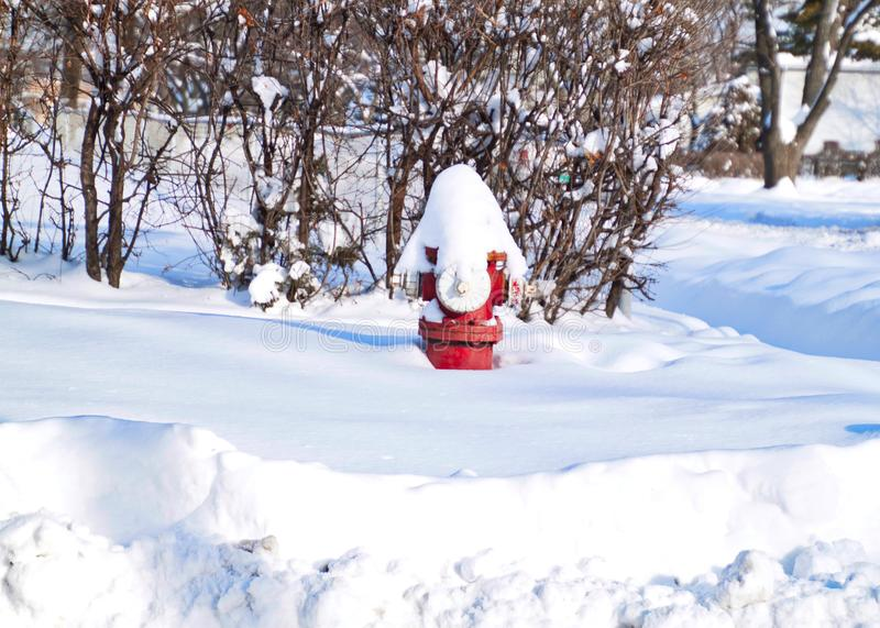 Snow is piled on top of red fire hydrant after winter storm in February. Snow is piled on top of red fire hydrant after midwestern winter storm in February stock images