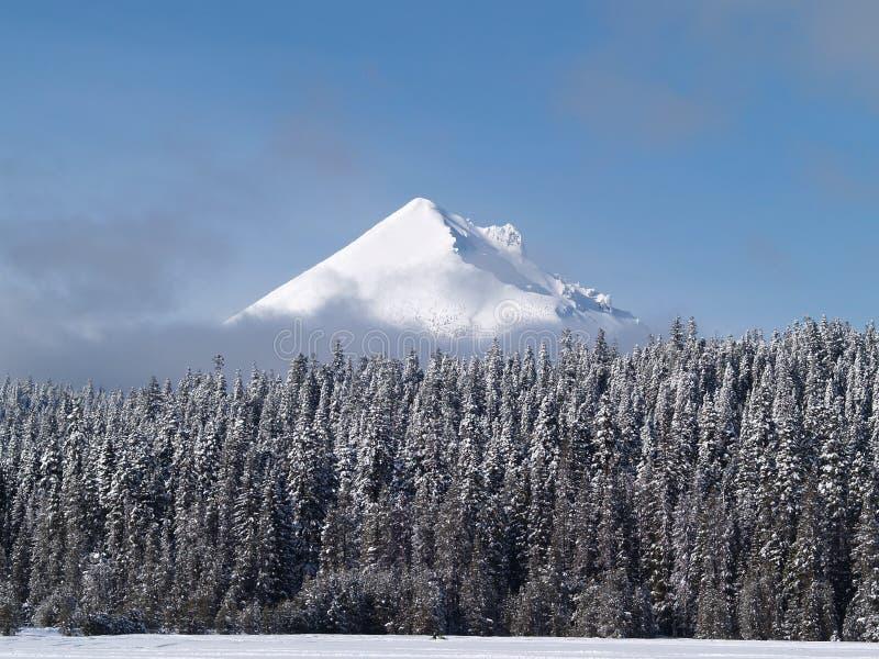 Snow räknade Mt. McLaughlin i sydliga Oregon royaltyfri fotografi