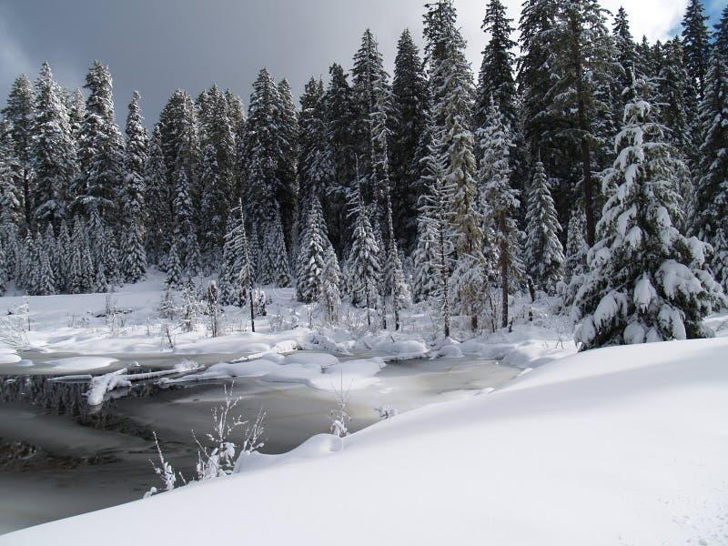 Snow räknat liten vik och damm arkivbild