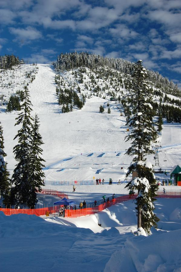 Download Snow Resort stock image. Image of trees, fresh, 2010 - 17359781