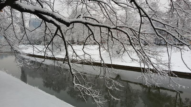 Snow - river at winter royalty free stock photos