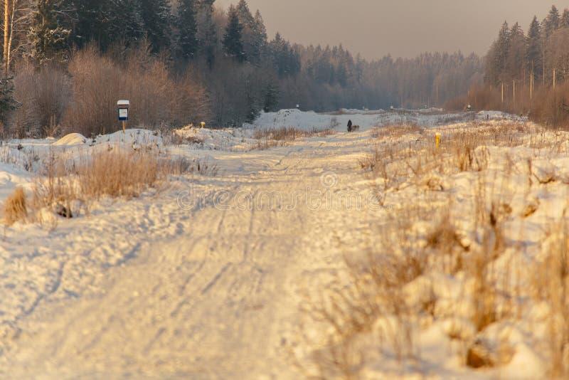 Snow road at sunrise_3 royalty free stock image