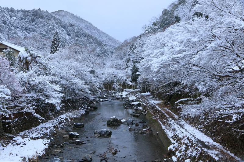 Snow scene of Kiyotaki river, Kyoto. This is a snow scene of Kiyotaki river in suburbs of Kyoto. It snowed for the first time in this winter.it was wholly silent royalty free stock images