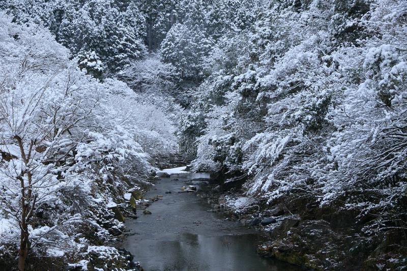 Snow scene of Kiyotaki river, Kyoto. This is a snow scene of Kiyotaki river in suburbs of Kyoto. It snowed for the first time in this winter.it was wholly silent royalty free stock photo