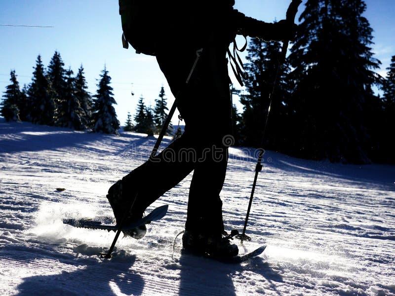Snow shoe walking sillhouette royalty free stock image