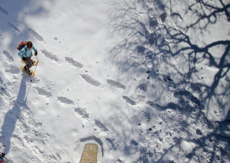 Snow, Sky, Extreme Sport, Winter royalty free stock image