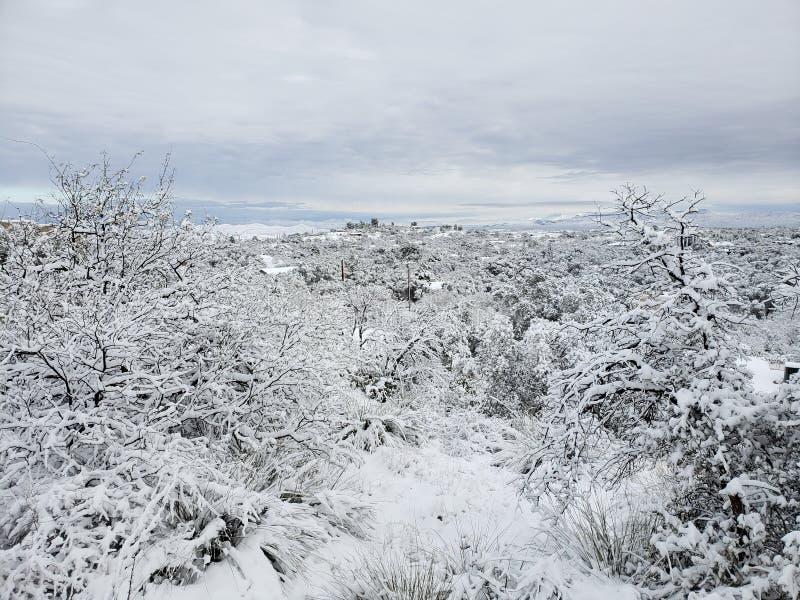 snow fotografering för bildbyråer