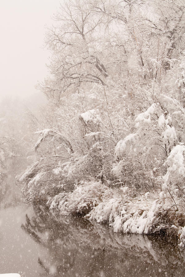 Free Snow Storm In Late Spring Stock Photography - 30750482