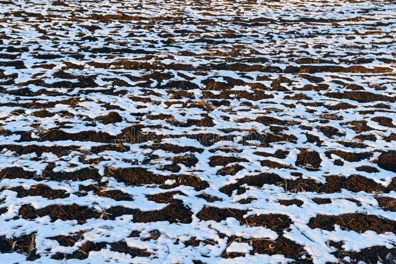 Snow streaks and drifts on the land. Snow streaks and small drifts on the plowed land stock image