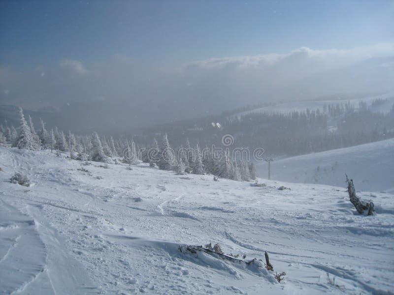 Snow and Sunshine stock image