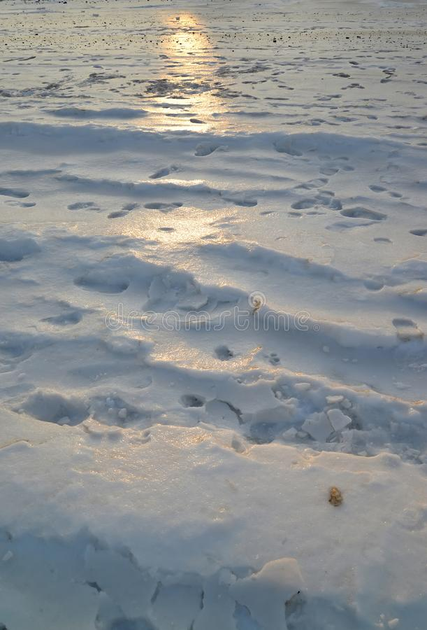 Snow surface with traces of people and solar path stock images
