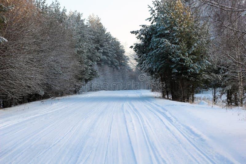 Snow-täckt väg i skogen arkivbild
