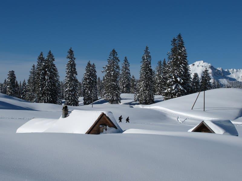 Snow täckte kojor och trees, Toggenburg fotografering för bildbyråer
