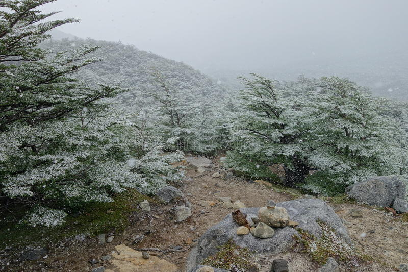 Snow on the trail royalty free stock photography