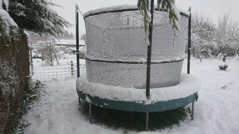 Snow on a trampoline in the back garden. Snowfall snowflakes white lying grass lawn yard conifer hedge blanket playing fun jumping bouncing springing fun royalty free stock photo