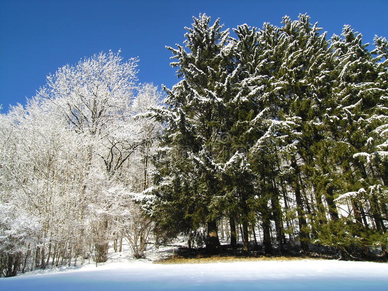 Snow and less so stock photography