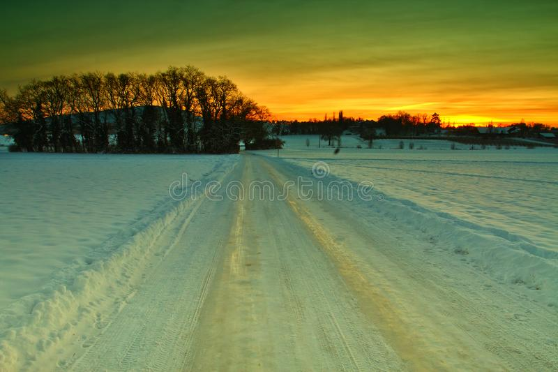 Snow, trees and sunset. Orange sunset coloured skies above a frozen landscape