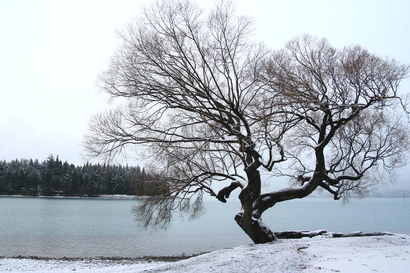 Snow view of Lake Wakatipu stock images