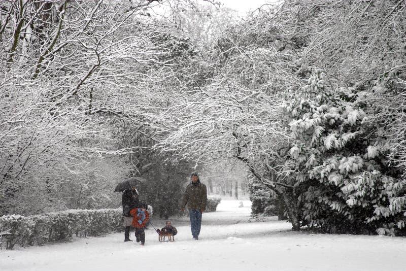 Snow walk stock photo