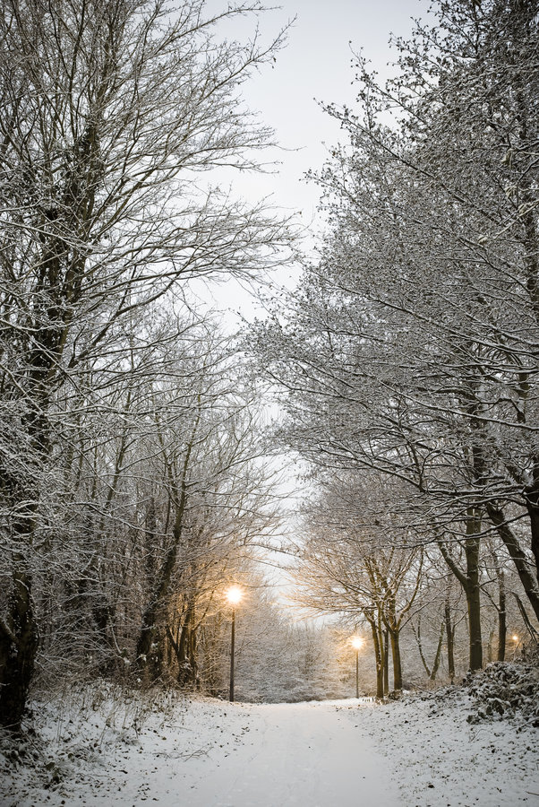 snow walk στοκ εικόνες