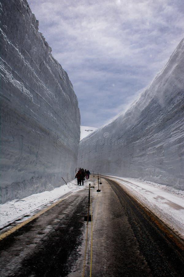 Snow Wall royalty free stock photo
