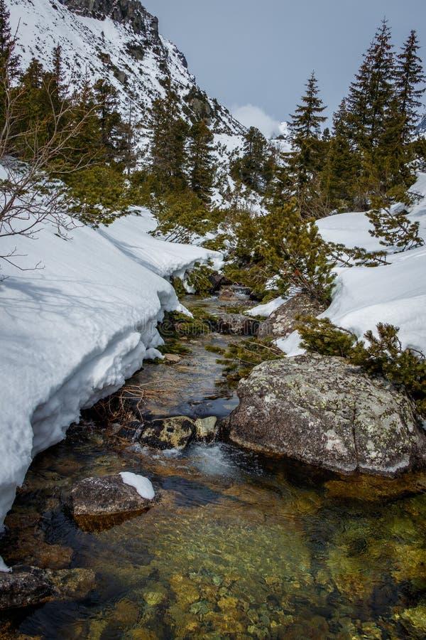 Snow, Water, Winter, Nature Free Public Domain Cc0 Image