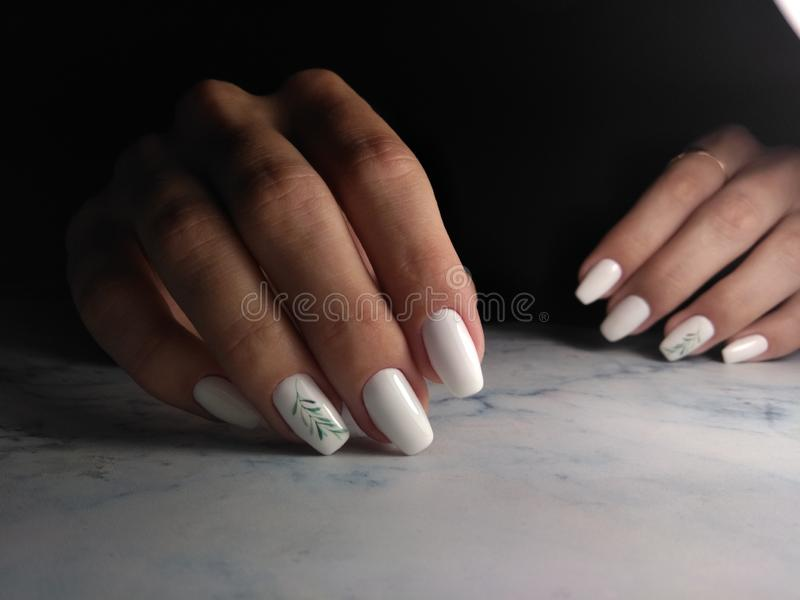 Snow-white gel Polish with a green twig. Long square nails with white coating and green twig design royalty free stock photo
