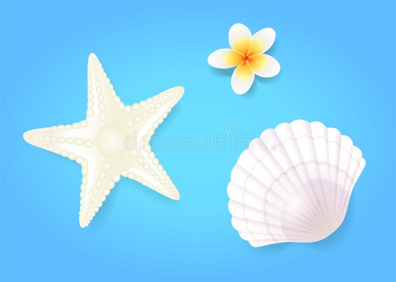 Snow-White Shellfish and Starfish with Pale Exotic Flower royalty free illustration