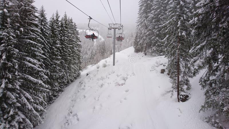 Snow, Winter, Piste, Tree Free Public Domain Cc0 Image