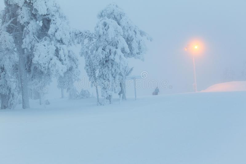Snow in winter time skiing place. White cold and beautiful place royalty free stock image