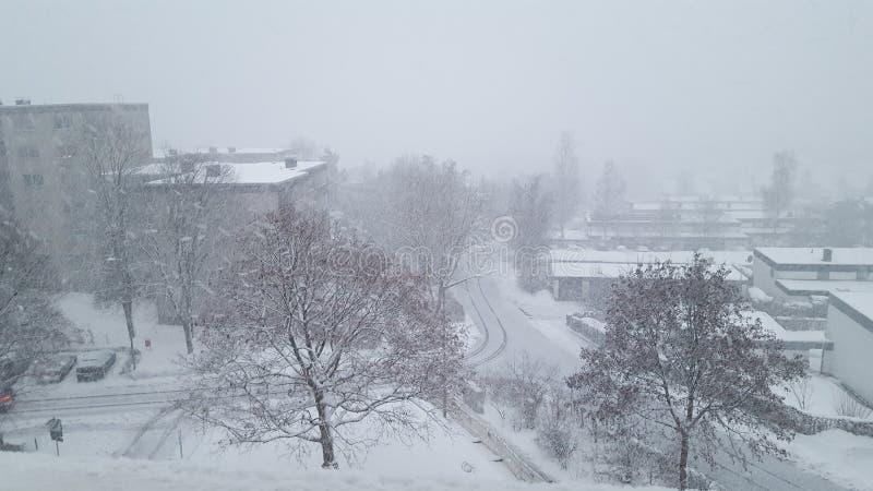 Snowbackground 免版税库存照片