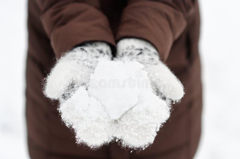 snowball foto de archivo