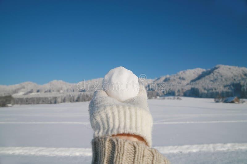 snowball fotografia stock libera da diritti