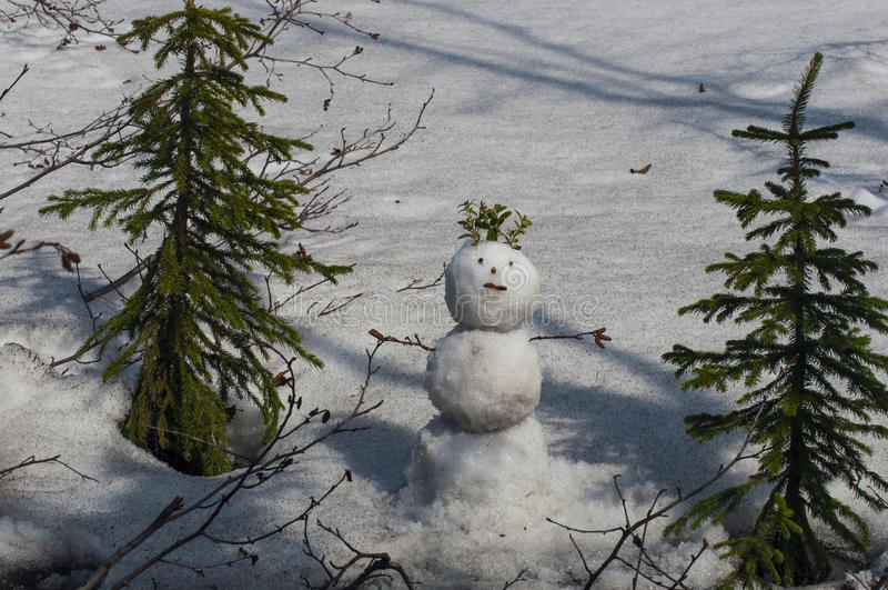 snowball fotografia stock