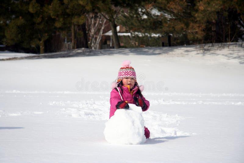 Snowball do inverno foto de stock