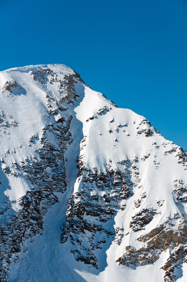 Snowbird 3 στοκ εικόνα