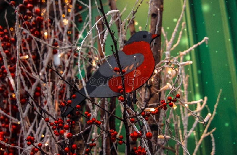 snowbird foto de archivo libre de regalías