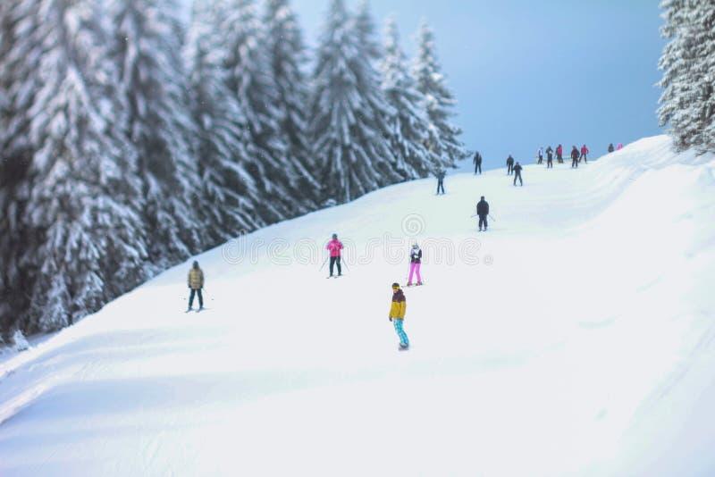 Snowboard royalty free stock image