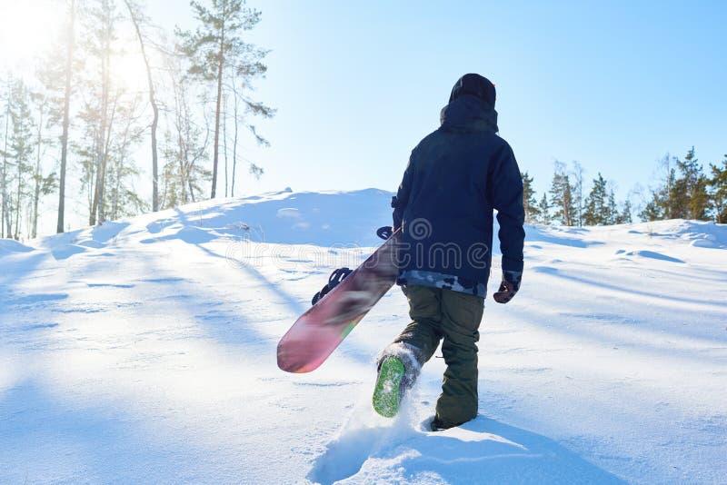 Snowboarder στα ξύλα στοκ εικόνες