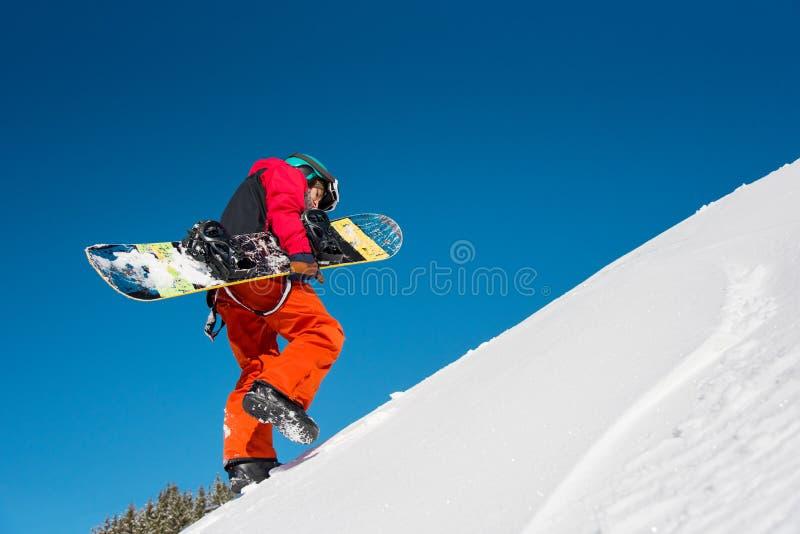 Snowboarder исследуя снежные горы стоковое фото rf