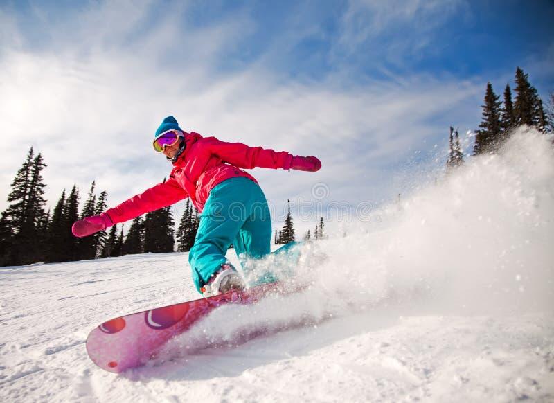 Snowboarder fotos de stock