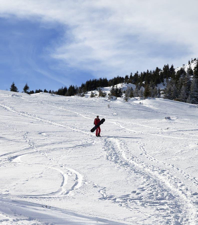 Snowboarder en cuesta fuera de pista nevosa con la snowboard en manos en la mañana del invierno del sol fotos de archivo