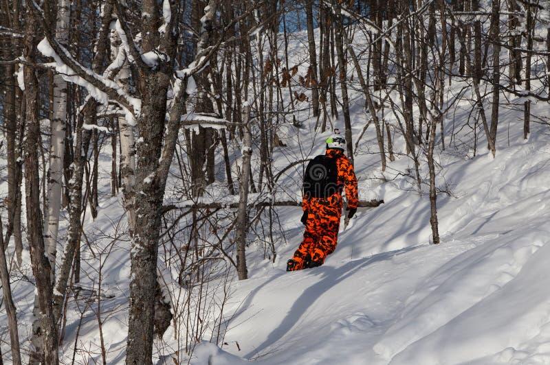 Snowboarder en el equipo anaranjado del camuflaje que se desliza en nieve fresca del polvo en el bosque fotos de archivo