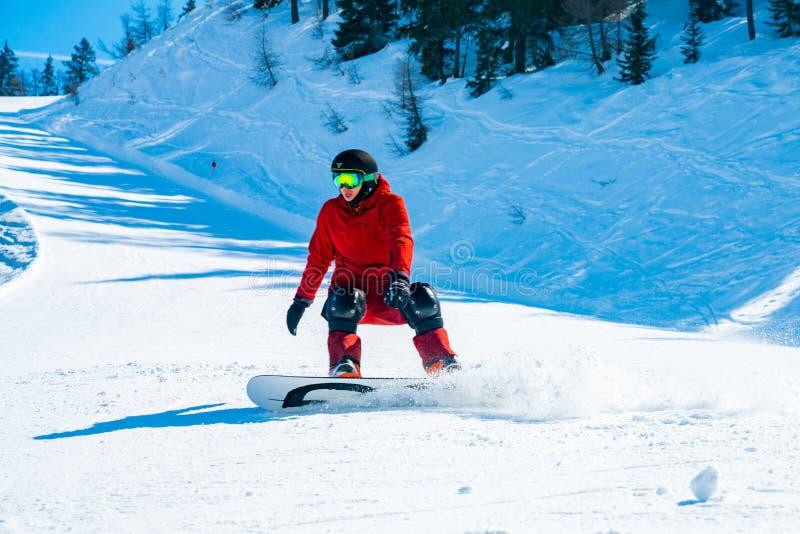 Snowboarder iść w dół skłony w Austriackich Alps przez lasów zdjęcia stock