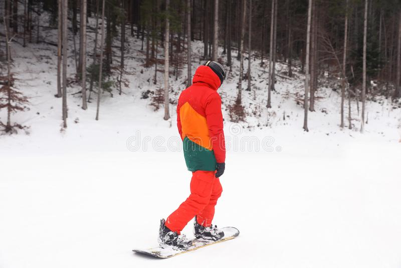 Snowboarder na inclinação no recurso Inverno fotos de stock