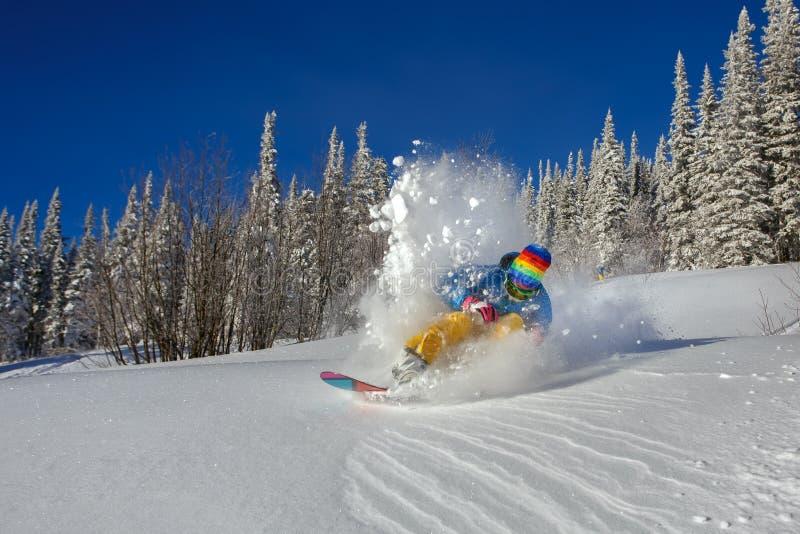 Snowboarderen som gör en tåsida, snider arkivbilder