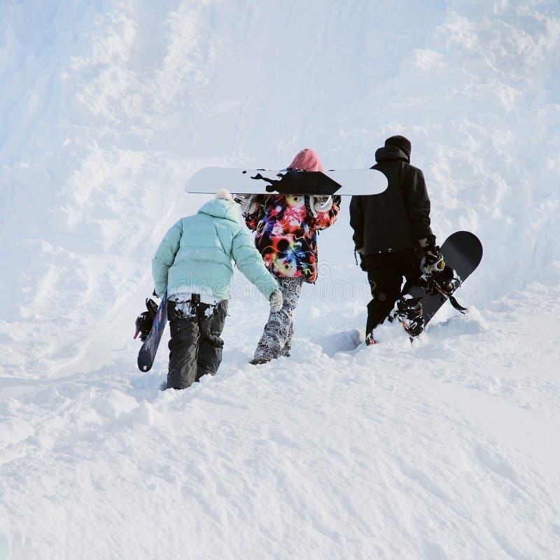 Snowboarders dans les montagnes photos libres de droits