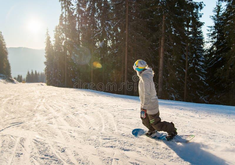 Snowboarding de jeune femme sur la pente sur une fusée ensoleillée de coucher du soleil de lumière du soleil de copyspace de soir images stock
